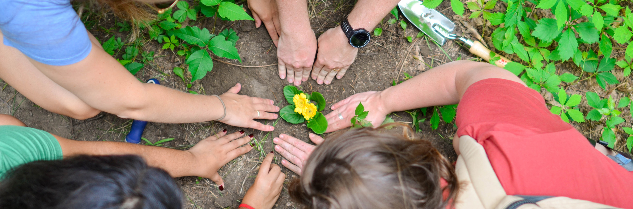 Peoples hands around a flower planted in garden. Photo by Element5 Digital on Unsplash